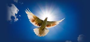 HOLY-SPIRIT-191606_630x298
